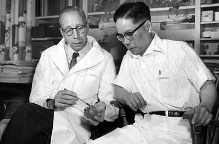 Doctors examine an artificial heart developed at the Cleveland Clinic.