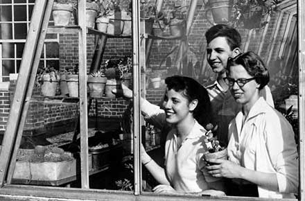 Caring for plants in the greenhouse on the roof of Shaker Heights High, 1956