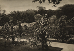 Thumbnail of the Auld Brig O' Doon and Gardens, Ayrshire